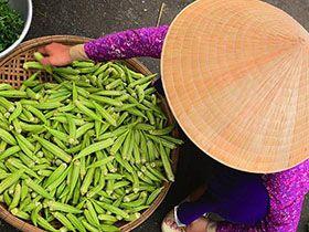 不會變成濫攤子的越南新娘一條龍辦到好婚姻介紹